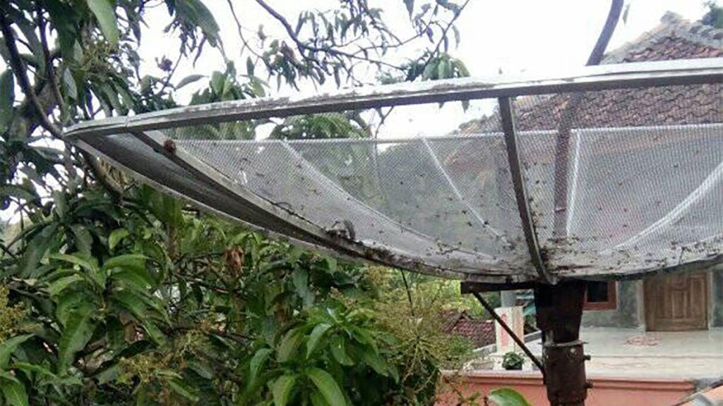 Frekuensi SCTV di Telkom 4 Terbaru